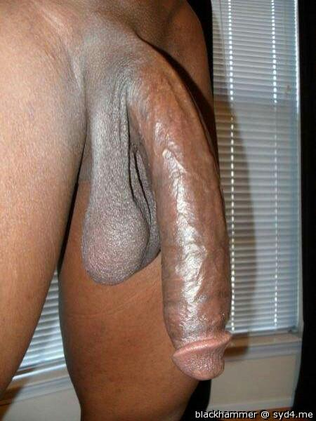 Just Dick Pic photo 2